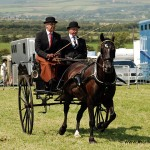 Horse and Trap - Southern Agricultural Show 2011 © Peter Killey