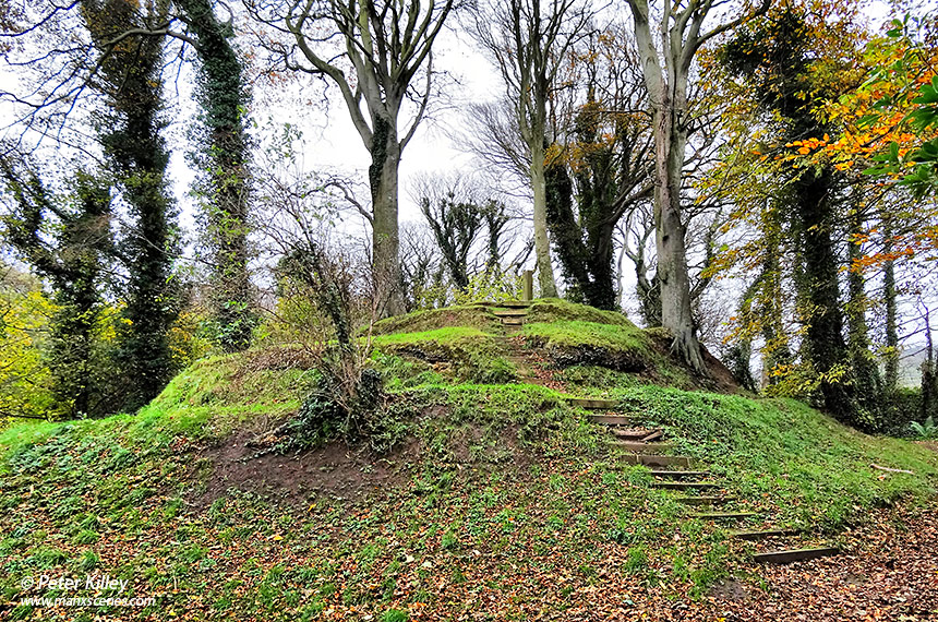 Mount Aeolus in Bishopscourt Glen -  © Peter Killey