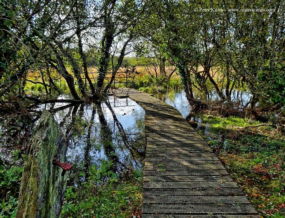 Curraghs Walkway in Ballaugh © Peter Killey - www.manxscenes.com
