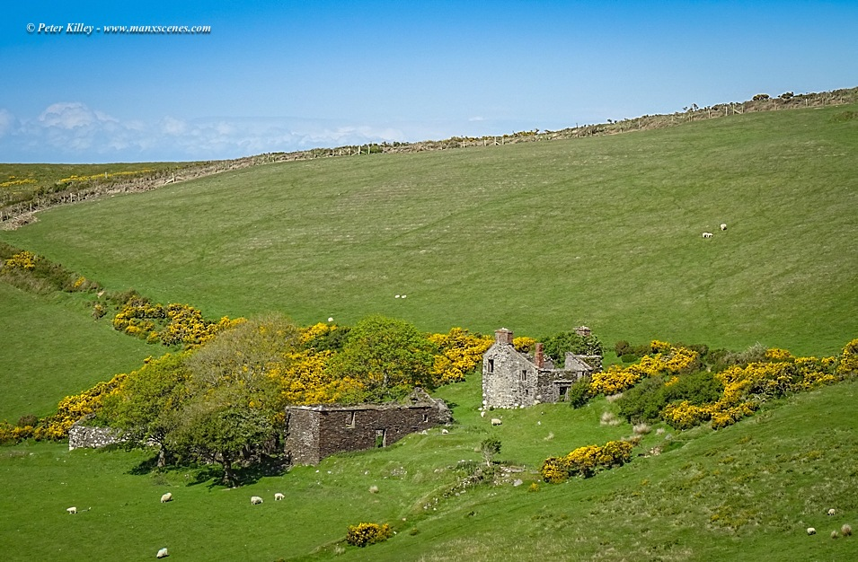 Upper Grange Tholtan © Peter Killey - www.manxscenes.com