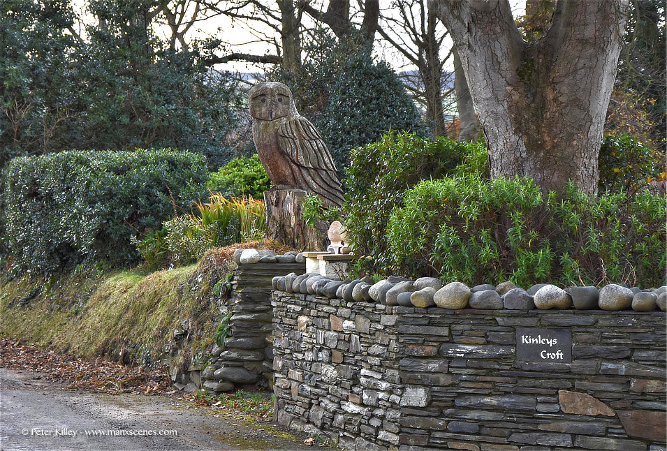 The Owl ©Peter Killey - www.manxscenes.com