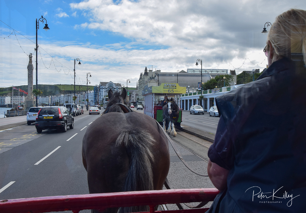 Douglas Horse Tram © Peter Killey - www.manxscenes.com