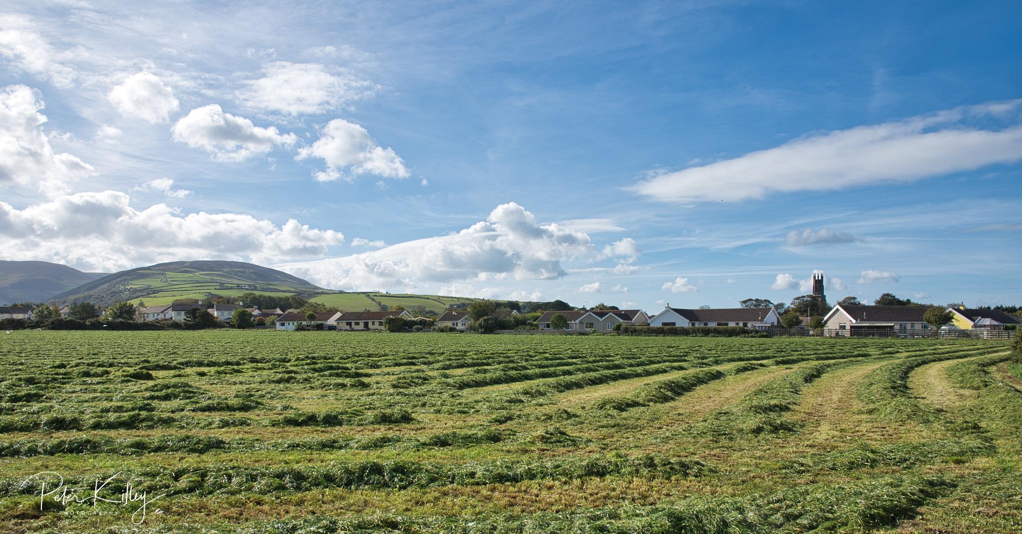 Ballaterson in Ballaugh - © Peter Killey - www.manxscenes.com